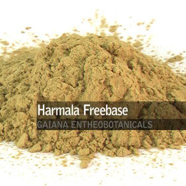 Harmala Freebase Isolate 99%
