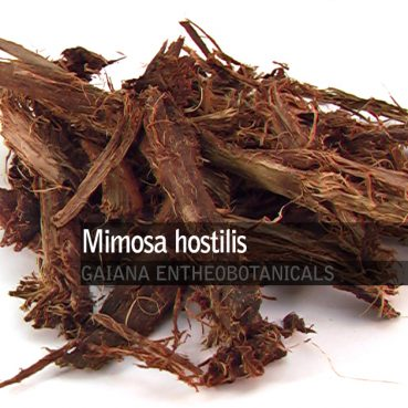 mimosa-hostilis-root-bark