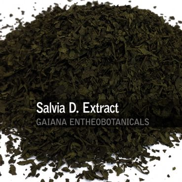 Salvia divinorum -Extract-