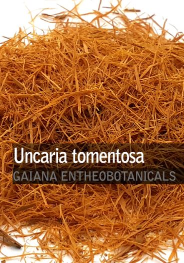 Uncaria tomentosa -cat's claw-