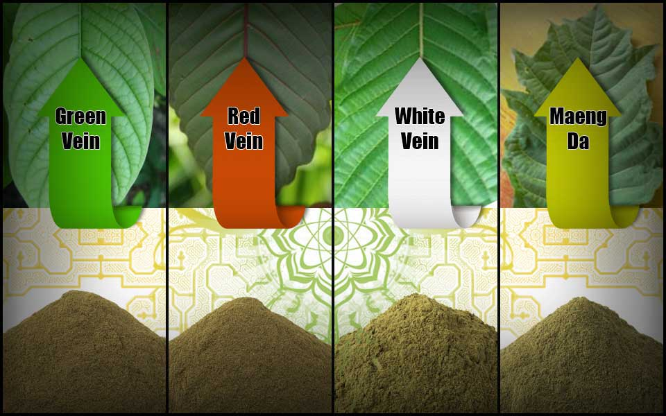 Kratom Selection