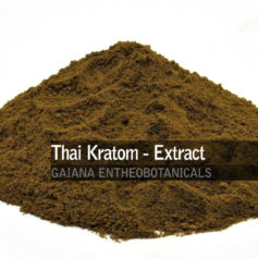 Thai-Kratom-Extract