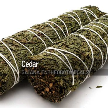 Cedar-Smudge-Bundle