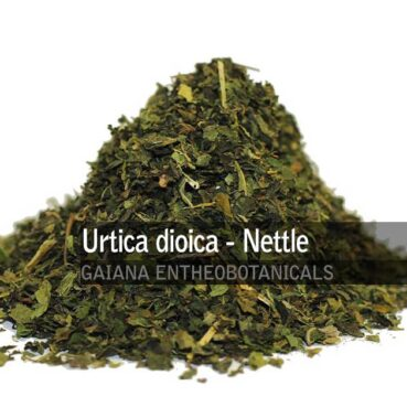 Urtica-dioica-Nettle-Leaves